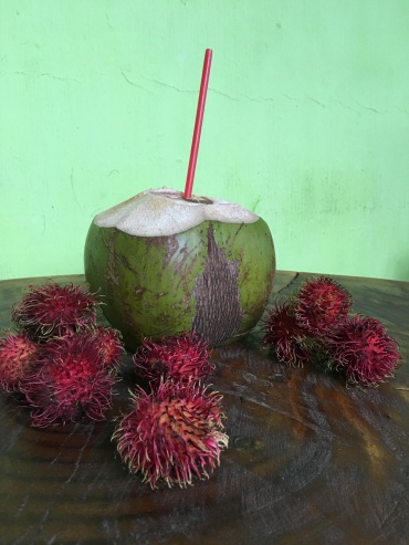 coconut and lychee fruit